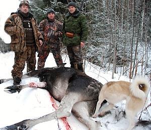 Охотники на лося с трофеем