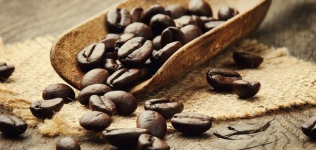 Что такое кофе specialty
