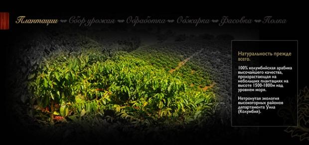 Кофе в зёрнах Nuesta - Плантации